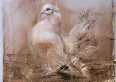 """""""Studie: Vogel"""" von Rafael Ramírez Máro"""