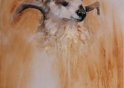 """""""Studie: Ziege"""" von Rafael Ramírez Máro"""