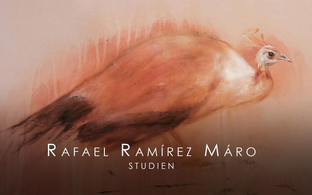 13.02.2021 – VIRTUELLE VERNISSAGE: Rafael Ramírez Máro – Studien