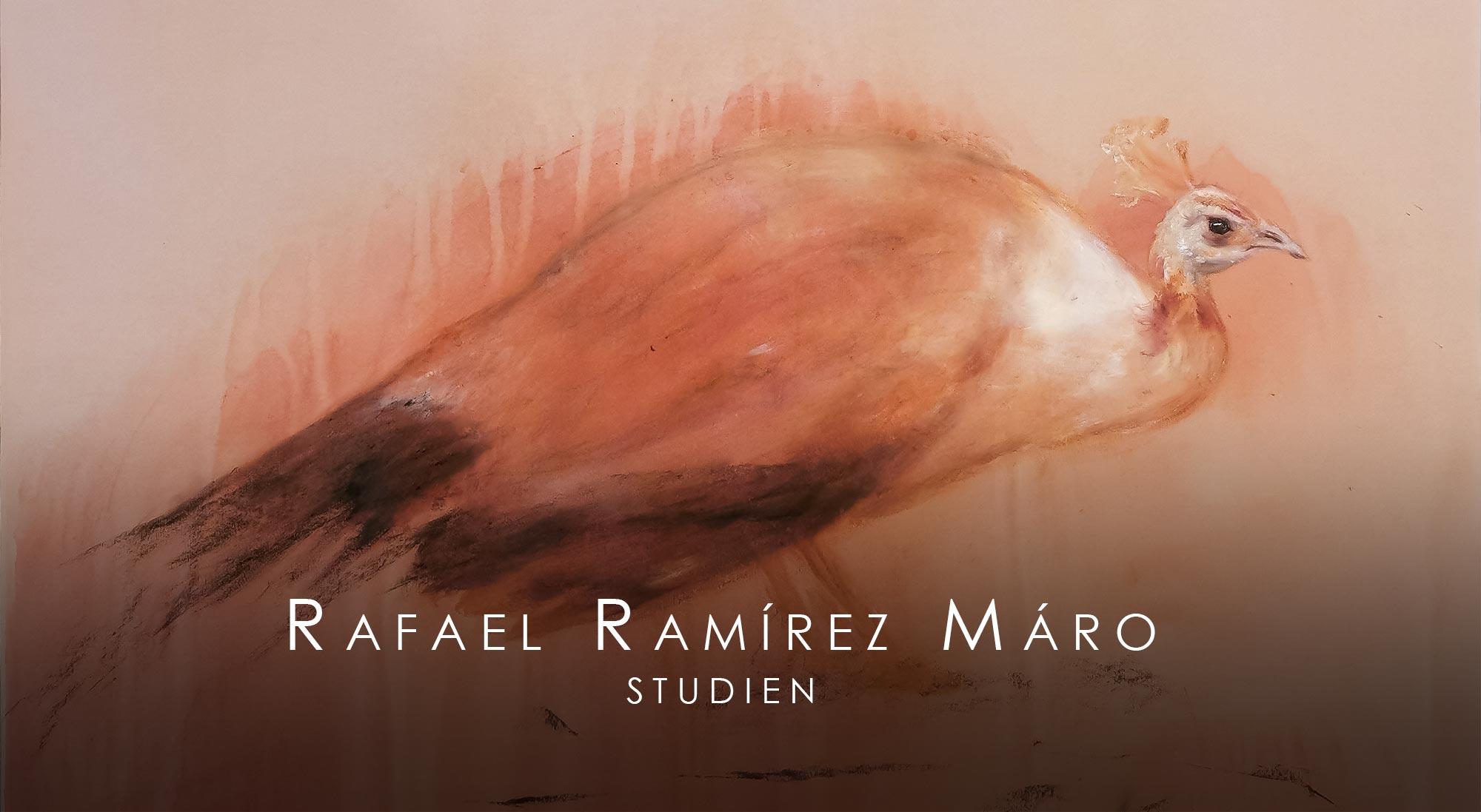 """Titelbild der Ausstellung """"Studien"""" von Rafael Ramírez Máro"""